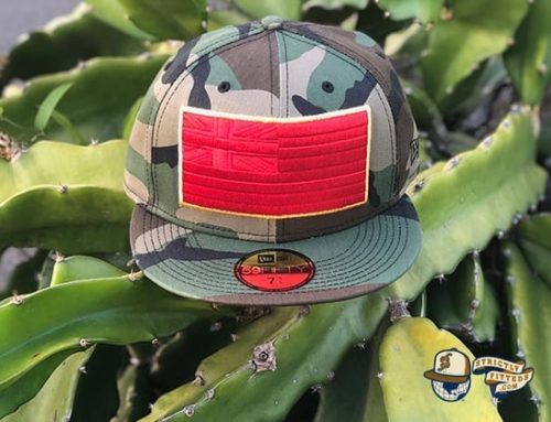 Slaps Wind 59Fifty Fitted Cap by Fitted Hawaii x New Era