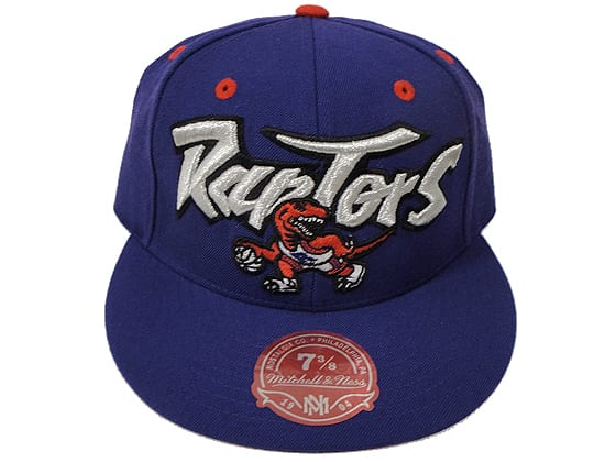 Toronto Raptors itted Cap Mitchell and Ness NBA