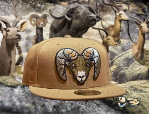 Bighorns Wheat Black 59Fifty Fitted Hat by Dionic x New Era