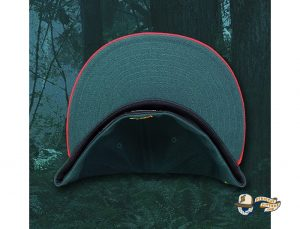 The Redtails 59Fifty Fitted Hat by Over Your Head x New Era Undervisor